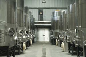 Modern winery facility utilizing stainless steel containers compared to old style wooden barrels.