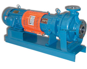 R4000 Heavy Duty Process Pump