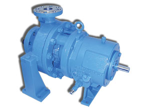 R5000 Series Heavy Duty API Pump