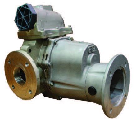 FTS Series Pump